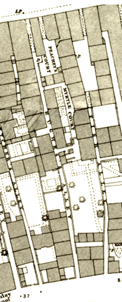 Hughes plan in the 1880s